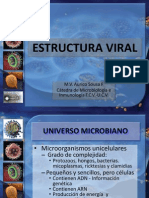 20 Estructura Viral Micro Enero 2012