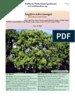 Mangifera Mango Planting