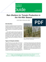 Rain Shelter for Tomato Production