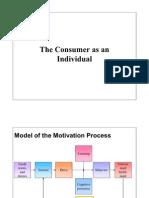 Consumer Behaviour Motivation