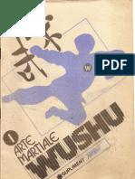 Curs de Wushu 1