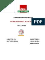 amul final1
