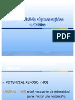 Proceso de reexitación necesario para la ritmicidad espontánea (1)