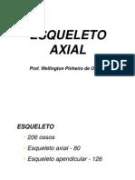 Esqueleto Axial - Texto Well