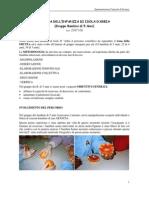 Relazione Sperimentazione Curricolo biologia 5 ANNI a.s 2007/08