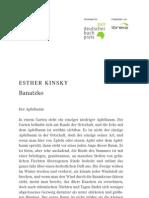 07_kinsky_banatsko