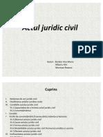Act Juridic Civil