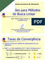 40424956 Direcoes Para Metodos de Busca Linear