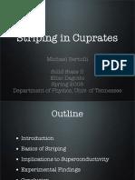 Michael Bertolli- Striping in Cuprates