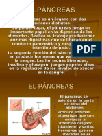 Pancreatitis Ppt