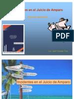 1a_Incidentes_en_el_Juicio_de_Amparo_brev[1]