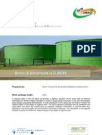 Biogas Research Report Europe