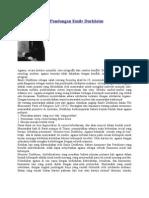 Agama Menurut Pandangan Emile Durkheim