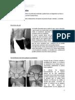 Protocolo  para la evaluación de la pelvis