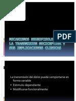 Mecanismos Neurofisologicos de La Transmision Nociceptiva y Sus