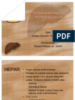TERAPI KARSINOMA HEPATOSELULER