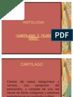 CARTILAGO_Y_HUESO[1]