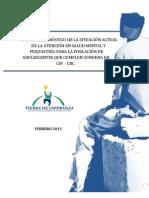 Informe Final Estudio Diagnóstico Salud Mental Adolescentes Infractores de Ley Privados de Libertad SENAME - Tierra Esperanza (Febrero 2012)