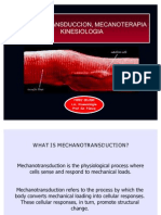 MECHANOTRANSDUCCTION MECHANOTHERAPY, KINESIOLOGY