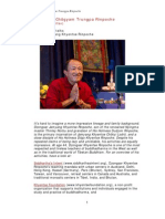 Reflections on Chögyam Trungpa Rinpoche (or