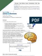 HowStuffWorks - Como funciona o cérebro