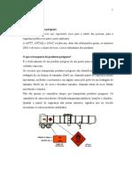 Transporte de Produtos Perigosos 2 Ofice 2003[1][1]