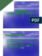 Digestive System 1  histology