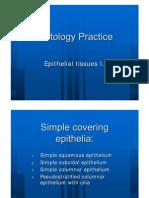 Epithelial Tissue 1 histology