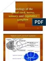 Histology of the Spinal Cord, Nerve, Sensory and Vegetative Ganglia