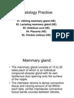 Embryo histology