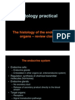 Histology of the Endocrine Organs