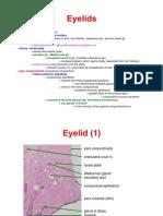 Histology of the Eyelid