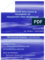 Membrane Biologice