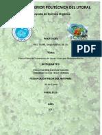 Informe de planta piloto de tratamiento de aguas grises por fitorremediación CSCET