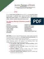 CSO Company Profile
