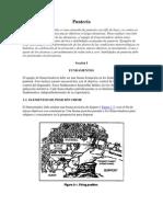 Manual Militar Francotirador