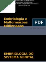 Embriologia e Malformações Müllerianas