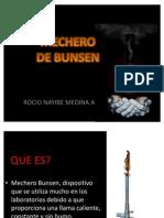 MECHERO DE BUNSEN