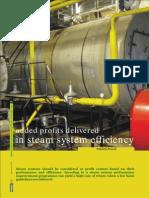 Profits in Steam System Efficiency