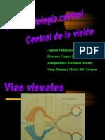 Vias Visuales, Funcion Del Nucleo Geniculado Lateral Dorsal