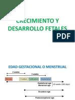 Crecimiento y Desarrollo Fetales