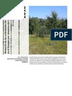 Memoria Actividades en El Bosque Con CEIP Loranca 2010-11