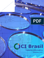 Relatorio Ci Brasil Online