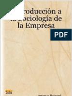 T2 Fragmento Sociologia de la Empresa