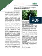 Hortalizas Producc Tecnificada Chile Inifap