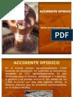 ACCIDENTE OFIDICO