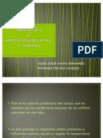 La Piel Diapositivas