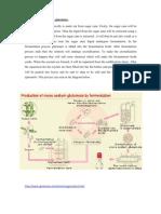 Process Manufacturing Ajinomoto
