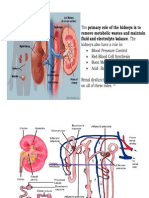 CKD and Management