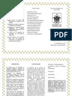 PDFOnline triptico